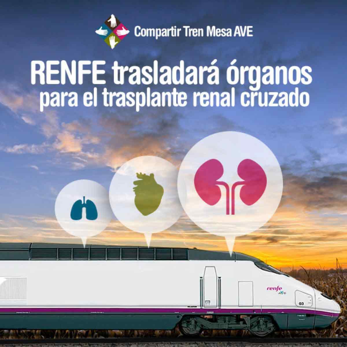 Los AVE trasladarán órganos para el trasplante renal cruzado.