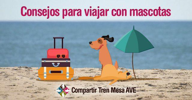 Todo lo que necesitas saber para viajar con mascotas
