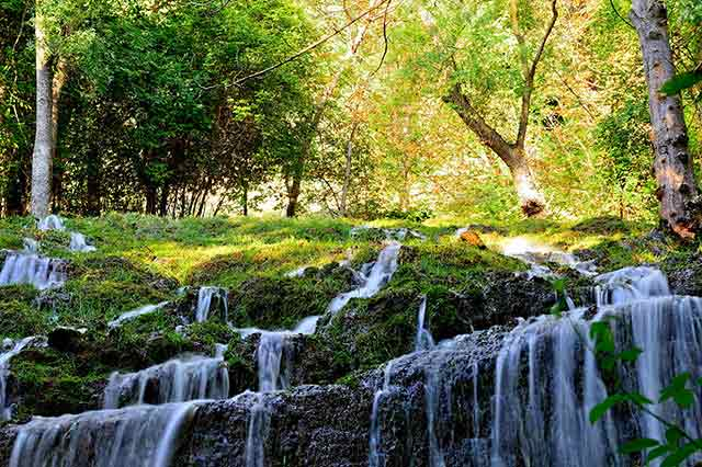 Parque Natural Monasterio de Piedra en Zaragoza