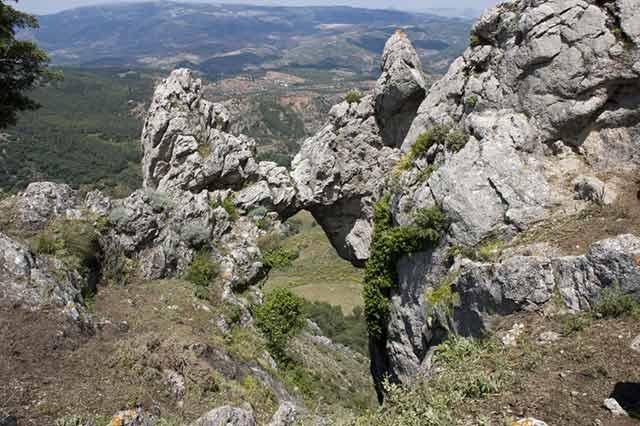 El Parque Sierra de las Nieves, uno de los 20 mejores parques naturales de España