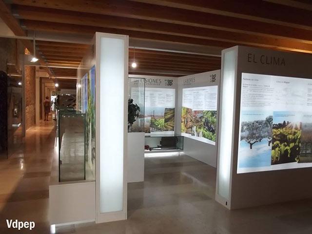 Museos-de-España-que-puedes-visitar-en-AVE
